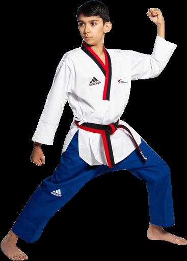 Dragon Taekwondo