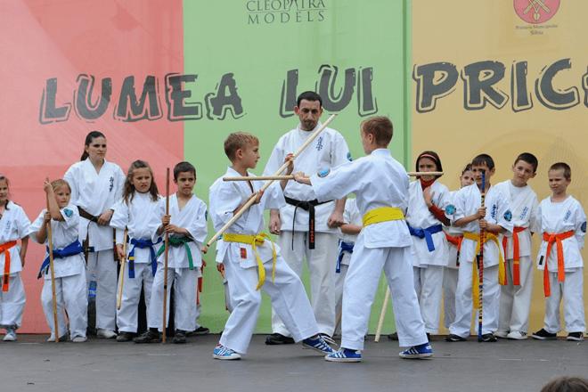 Summer Martial Arts Camps