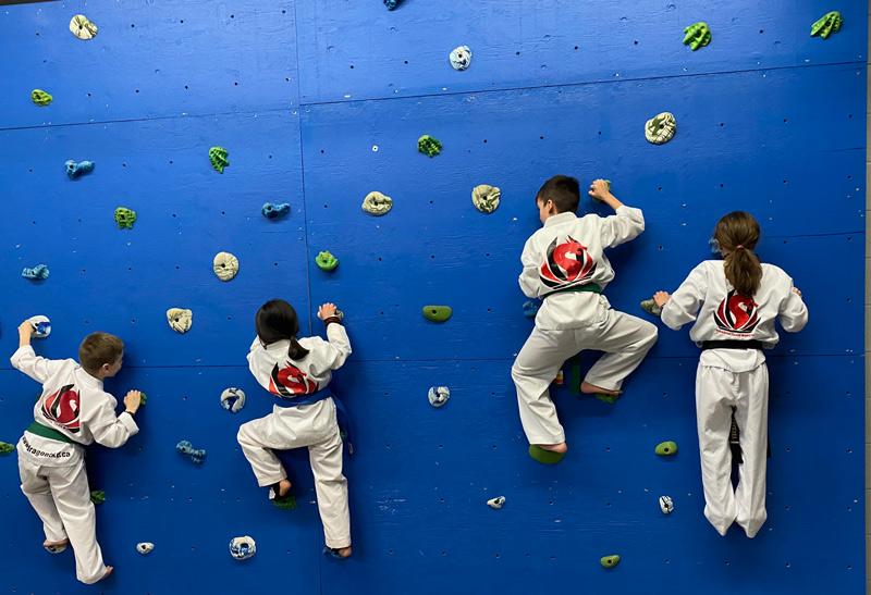 Martial Arts Training for Kids at Oakville Summer Camp